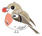 oiseau gourmand site le oiseaux de Paris